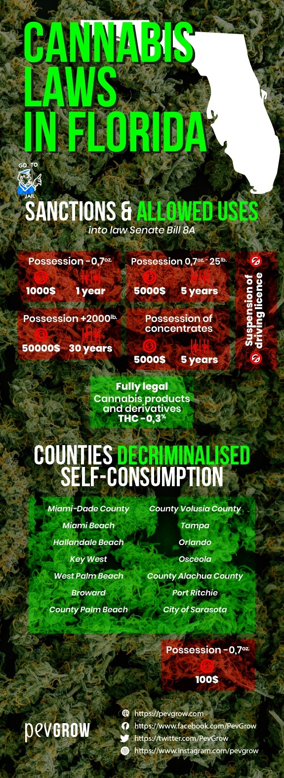 Florida cannabis laws -sanctions and permitted uses-.