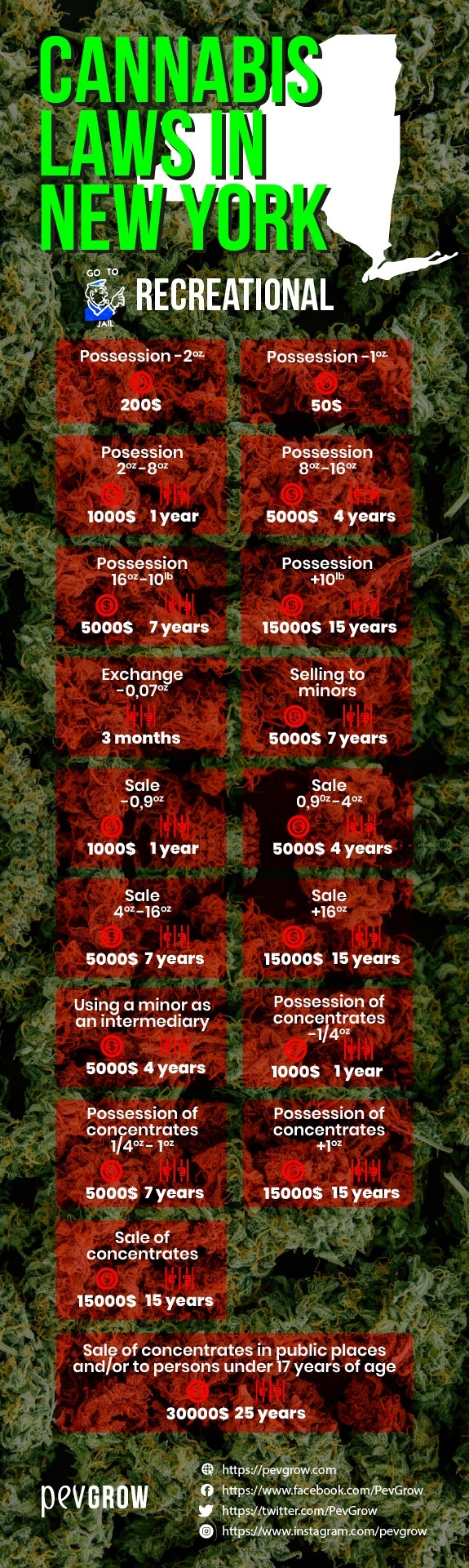 Cannabis laws in New York -sanctions and permitted uses-.